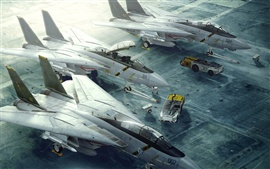 Preview wallpaper F-14 Tomcat fighter runway