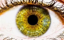 Preview wallpaper Green eye macro