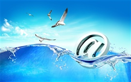 Preview wallpaper Seagull and Internet picture creative