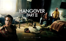Preview wallpaper The Hangover Part II HD