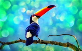 Preview wallpaper Toucan in the rainforest
