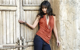 Preview wallpaper Jordana Brewster 02