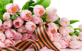 Preview wallpaper Pink tulip flowers and ribbon