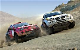 Sports car rally speed