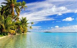 壁紙のプレビュー トロピカルビーチ