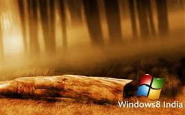 Aperçu fond d'écran Windows 8 en Inde