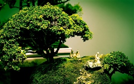 Preview wallpaper Bonsai tree shape art composition