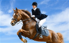 Preview wallpaper Jockey horse jump