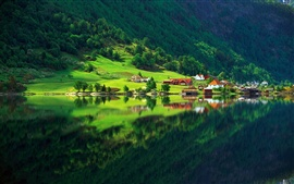 Preview wallpaper Nature forest green summer home village lake