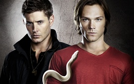Preview wallpaper Supernatural TV series