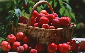 A basket of red plums