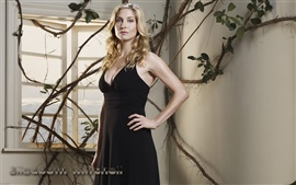 Preview wallpaper Elizabeth Mitchell 05