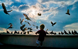 Preview wallpaper Little boy with pigeons