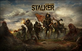 Aperçu fond d'écran Stalker en ligne