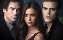 Aperçu fond d'écran The Vampire Diaries HD