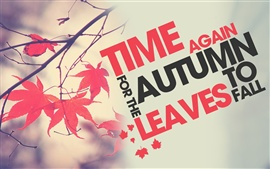 Preview wallpaper Time again autumn leaves