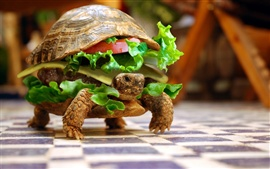 Turtle food creative images