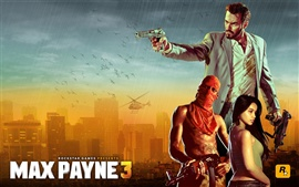 Preview wallpaper Max Payne 3