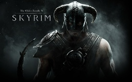 The Elder Scrolls V: Skyrim wide