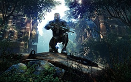 Preview wallpaper Crysis 3 HD