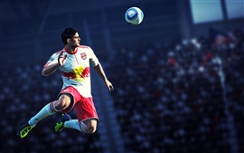 Preview wallpaper FIFA 12