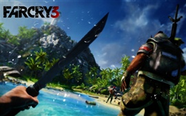 Preview wallpaper Far Cry 3 wide
