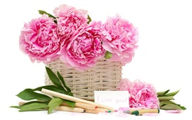 Preview wallpaper Peonies flower basket pencil crayons
