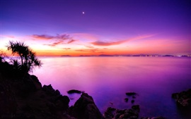 The purple sunset of the coast