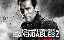 Preview wallpaper Arnold Schwarzenegger in The Expendables 2 movie HD