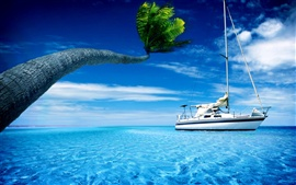 Boat, sea water, palm tree, hot summer sky
