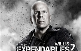 Preview wallpaper Bruce Willis in The Expendables 2