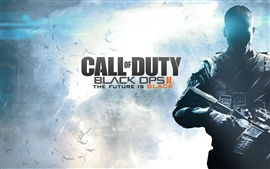 Aperçu fond d'écran Call of Duty: Black Ops 2 de large