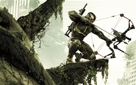 Preview wallpaper Crysis 3 HD game