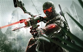 Vorschau des Hintergrundbilder Crysis 3 Jäger