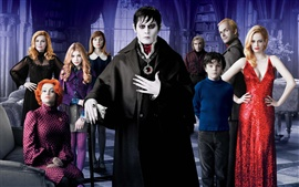 Dark Shadows HD