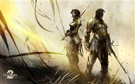 Preview wallpaper Guild Wars 2 HD