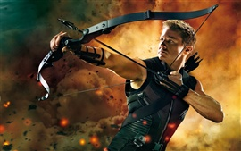 Preview wallpaper Hawkeye in The Avengers