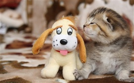 Preview wallpaper Little cat with toy dog