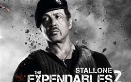 Preview wallpaper Sylvester Stallone in The Expendables 2 movie HD