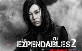 Preview wallpaper Yu Nan in The Expendables 2 movie HD