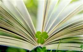 Book and green leaf