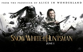 Preview wallpaper Chris Hemsworth in Snow White and The Huntsman