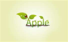 Preview wallpaper Creative apple leaf ladybug drops