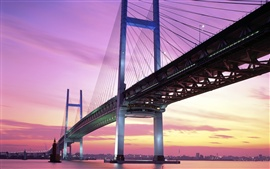Preview wallpaper Dusk Japan bridge