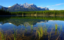 Preview wallpaper National Parks in Banff Canada