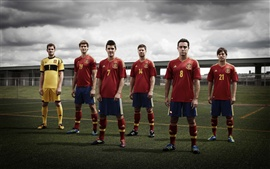 Preview wallpaper Spanish EURO 2012