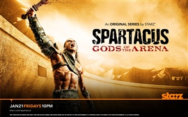 Preview wallpaper Spartacus: Gods of the Arena