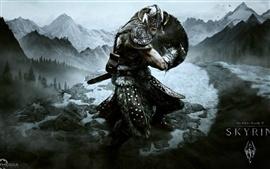 Aperçu fond d'écran The Elder Scrolls V: Skyrim jeu HD