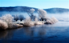 Preview wallpaper Winter lake shore the morning mist