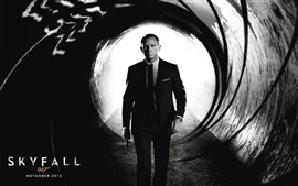 Preview wallpaper 2012 Skyfall